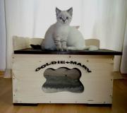 Katzenhaus Modell L